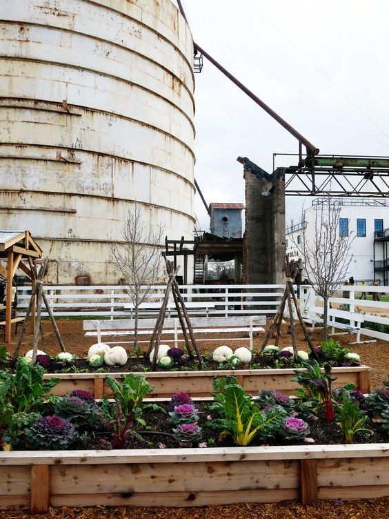 The garden at Chip and Joanna Gaines' Magnolia Market at the Silos from HGTVs Fixer Upper!! theonewhereimovetocalifornia.com: