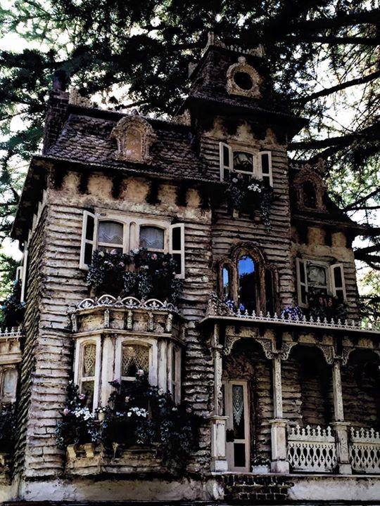 WyckedWood the Beacon Hill Dollhouse the SeaHag