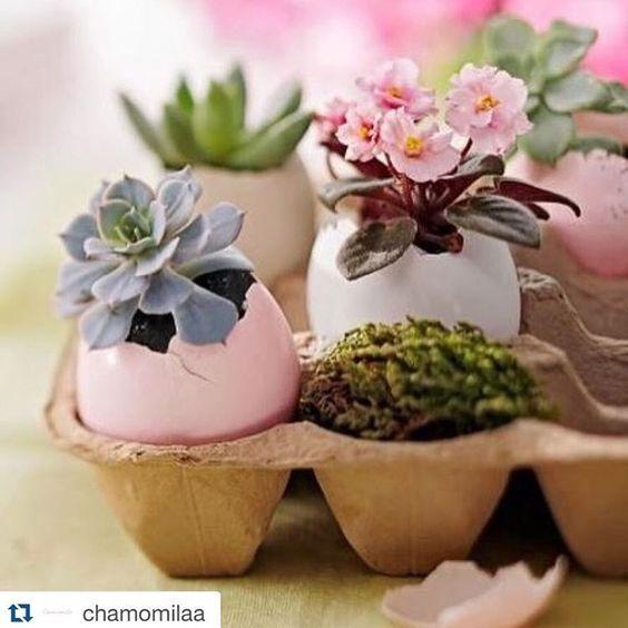 Coisa mais fofa esses ovinhos com flores para uma mesa de Páscoa. Inspiração para fazer em casa!!  #pascoa #inspiracao #inspiration #mesadepascoa #decoracao #decoracaodemesa #welovetoparty #love2party