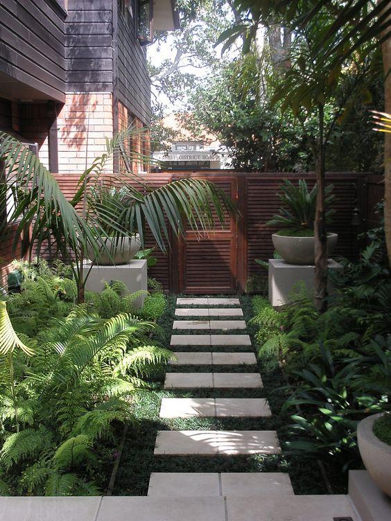 Am nagement d 39 une all e en pierre avec des plantes for Plantes tropicales exterieur