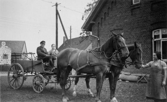 Paar auf Pferdewagen, wohl 1920-30er