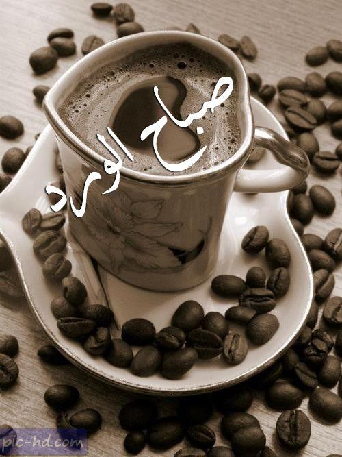 صور قهوه مكتوب عليها صباح الورد صور صباح الورد مع فنجان قهوة Tableware Arabic Calligraphy Art Glassware
