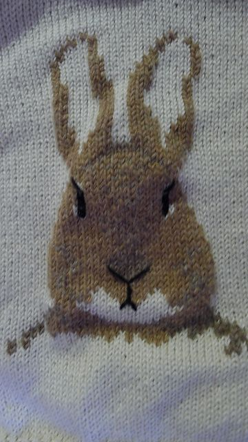 Rabbit Sweater Knitting Pattern : Ravelry peter rabbit pattern by pat menchini knitting