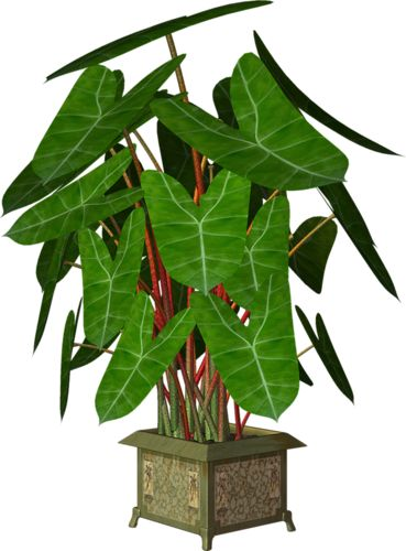 Garden Pot Clipart