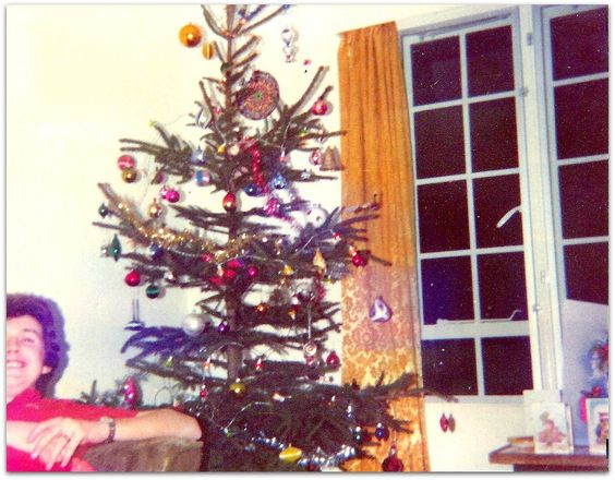 Christmas Tree: Dec 18 1976