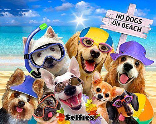 No Dogs On The Beach Selfie Yorkie Golden Lab Pug Snorkel Https