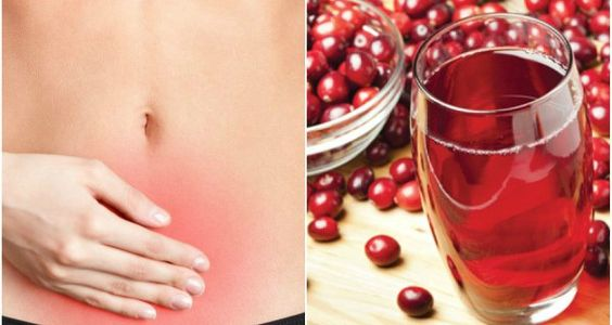 Healthy Juice For Urinary Tract Infection Healing – Your Daily Page