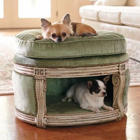 Awesome Dog Bed With Canopy Pet Spaces Pet Beds Cool Dog Beds