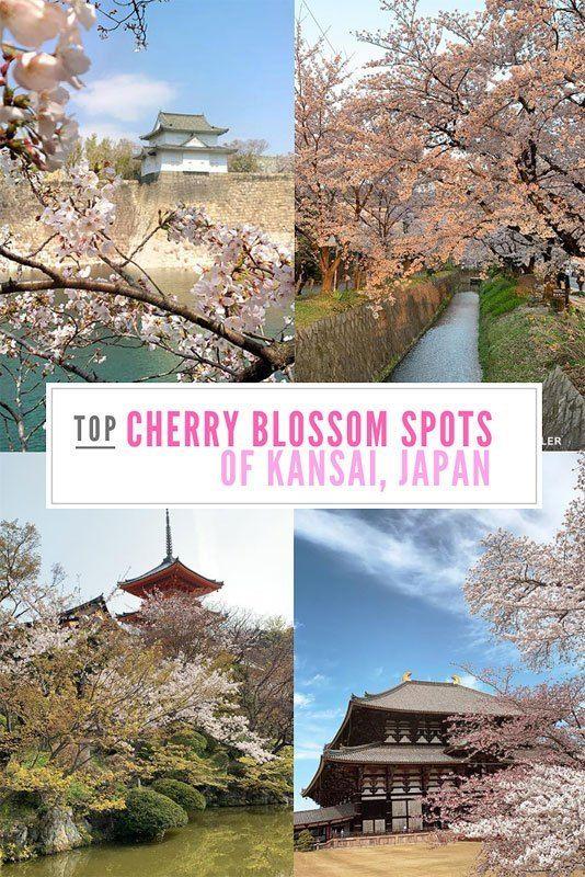 Top 10 Cherry Blossom Spots In Kyoto Osaka And Nara Kansai Osaka Cherry Blossom Asia Travel