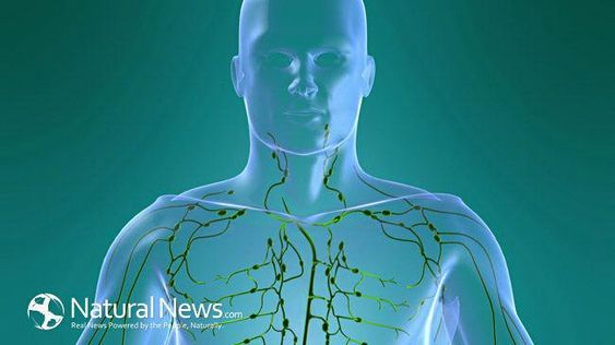 Clean your Body's Drains: How to Detoxify your Lymphatic System #tonsilstoneremedies