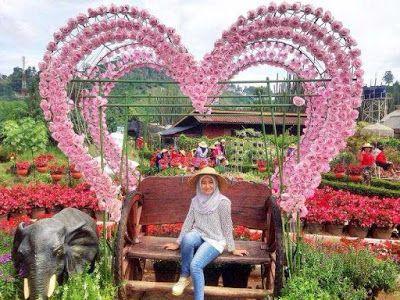 Kebun Begonia Bandung Lembang