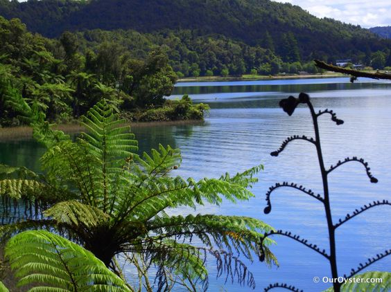 Rotorua – A Geothermal Playground