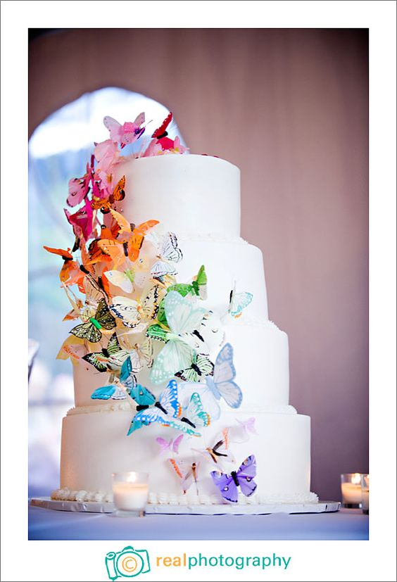 rainbow butterfly wedding cake rainbow butterfly cake get in my belly 18957