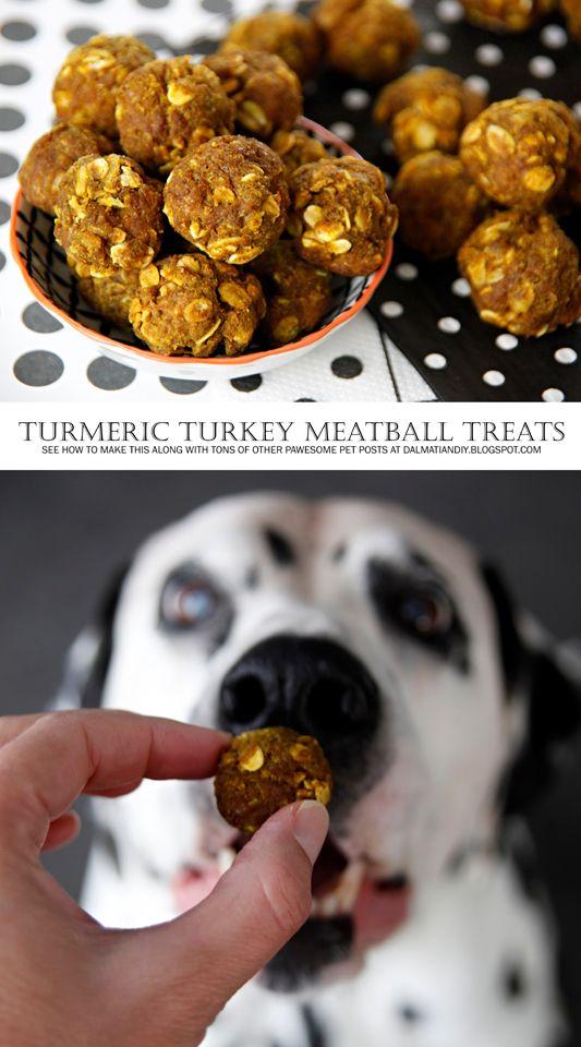 Recipe Tasty Turkey And Turmeric Meatball Dog Treats Dog Food