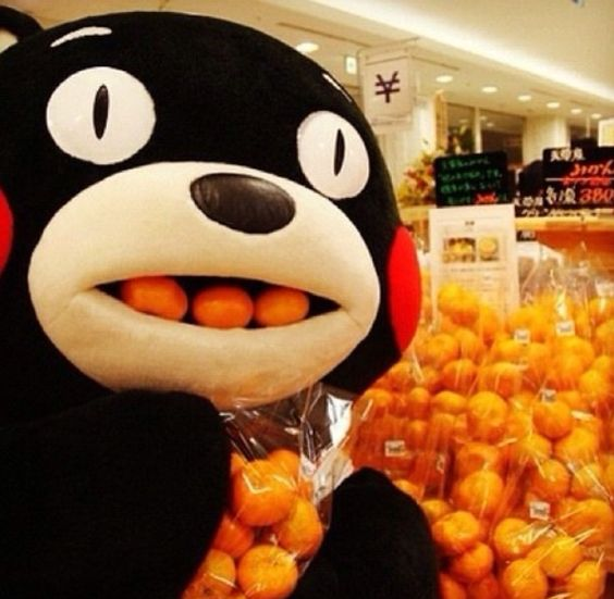 Mikans with Kumamon's mouth full