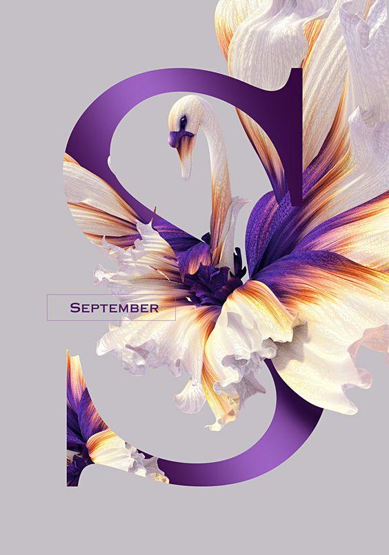 "[Inspirations du Studio] - Cygne violet avec design de ""S""                                                                                                                                                     More"