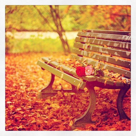 Bom Dia Outono! Uma ótima estação pra todas nossas Koquinas. #koquini #sapatilhas #euquero #outono