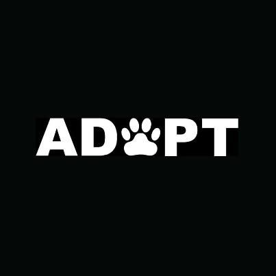 Adopt Shelter Animals! Don't forget about humans..... We're animals that need adopting too! ;)
