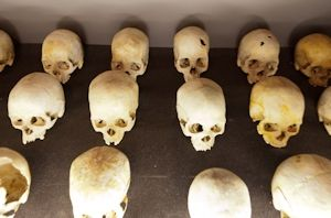 some of the human skulls gathered after the genocide