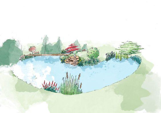 Pond landscaping - Sketch phase - Sandy MOREAU