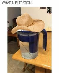 What in Tarnation: