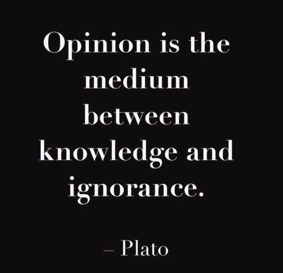 Idiot Quotes : Mens Opinions(and The Inseminated Opinions Of  