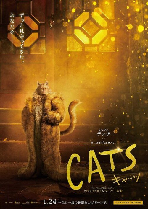 Get Photo Http Bolly4u Us In 2020 Cat Movie Movie Posters Musical Movies
