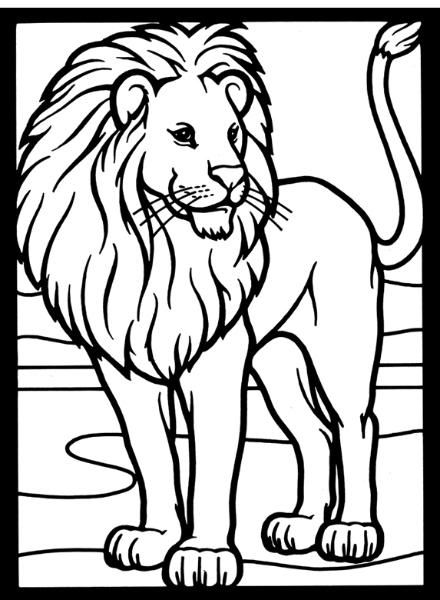 Nature Lion Image By Tharens