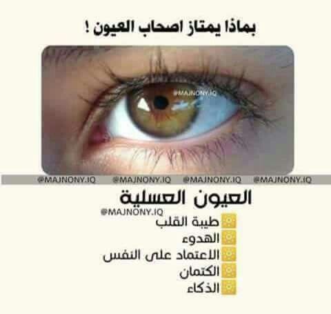 Pin By Ghada Elsayed On كلمات لها معني Bourbon Lol