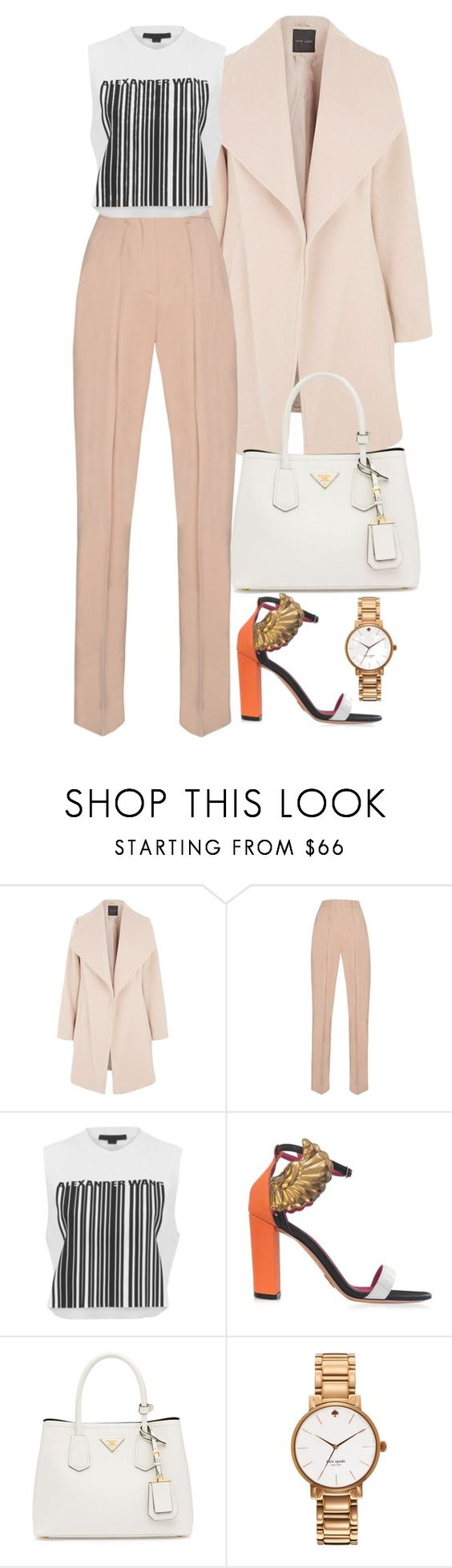 """Love It or Hate It"" by emma632roxx ❤ liked on Polyvore featuring MSGM, Alexander Wang, Oscar Tiye, Prada and Kate Spade"