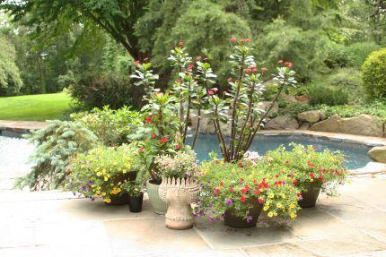 Margareta's garden in Connecticut--click through to see more photos of this garden