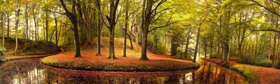 On Black Autumn Curve by Lars Van de-Goor.