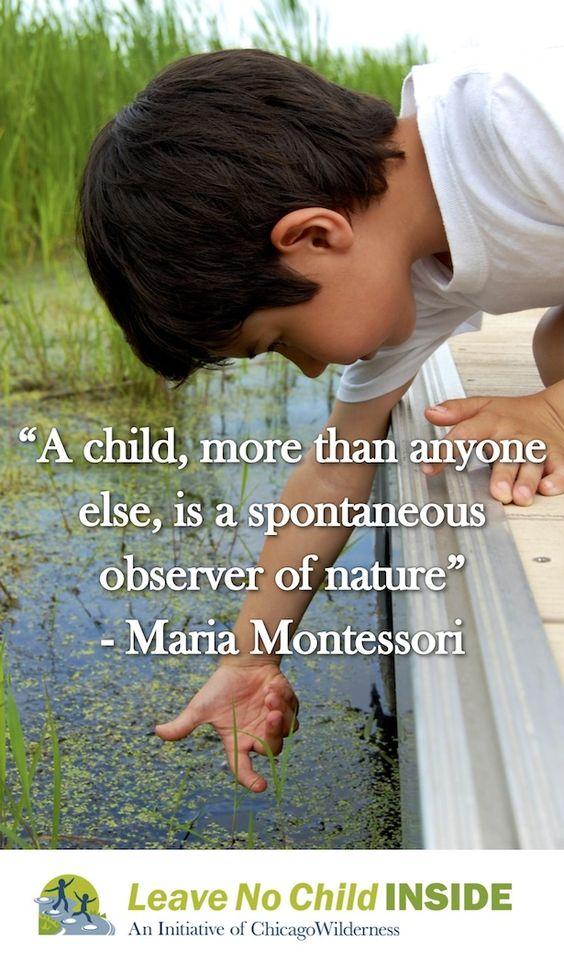 describe what montessori means by a spontaneous observer of nature The role of the teacher by clare walker introduction the following essay should describe the role of a teacher who develops by spontaneous work, following the guides of nature montessori believed that only a certain type of person suited the role of a montessori teacher the.