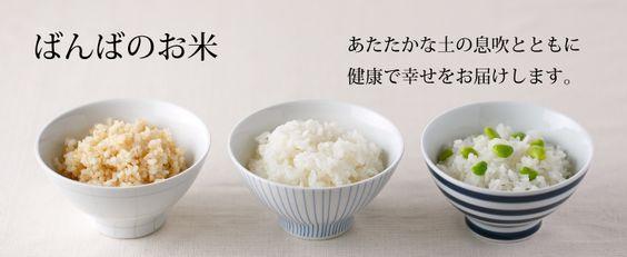 玄米の炊き方 圧力鍋