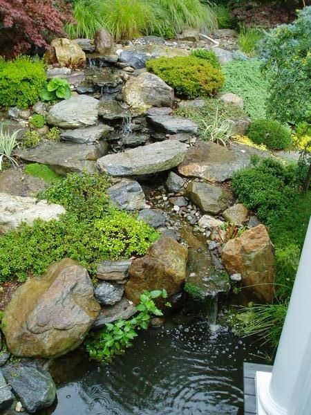 Backyard waterfalls koi pond and garden plantings in for Koi pond maintenance near me