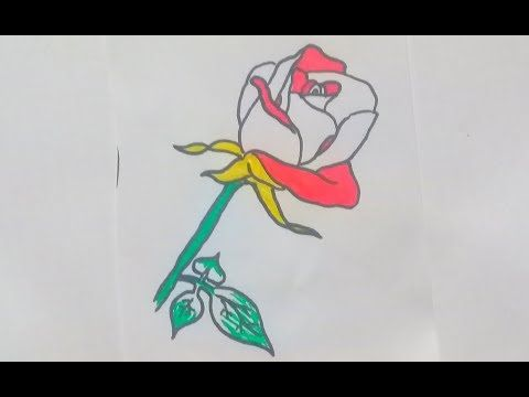 How To Draw A Flower Step By Step Flower Step By Step Drawings Draw