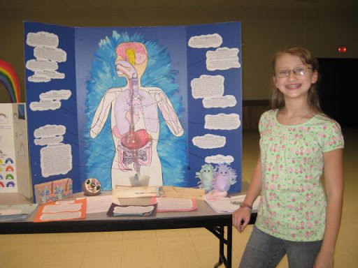 Anatomy Science Fair Projects