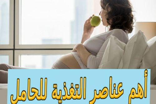 أهم عناصر التغذية للحامل Nutrition Pregnant
