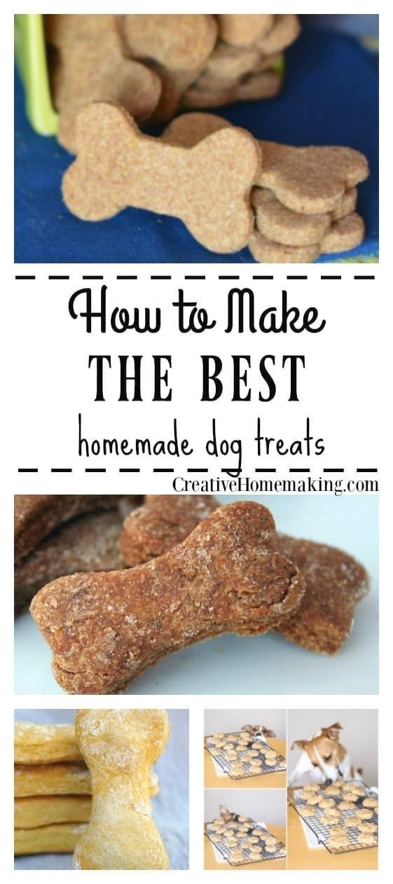 Eight Easy Healthy Dog Treats And Biscuits You Can Make Yourself