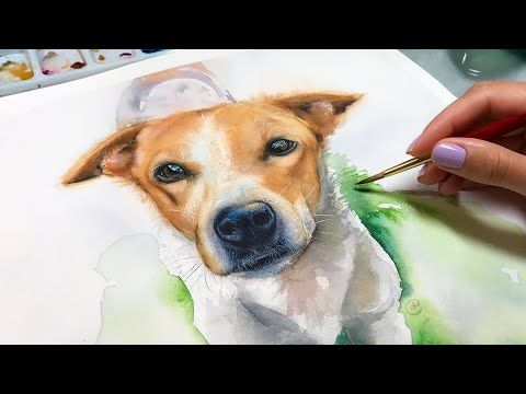Watercolor Tutorial Painting A Homeless Dog To Get Him Adopted