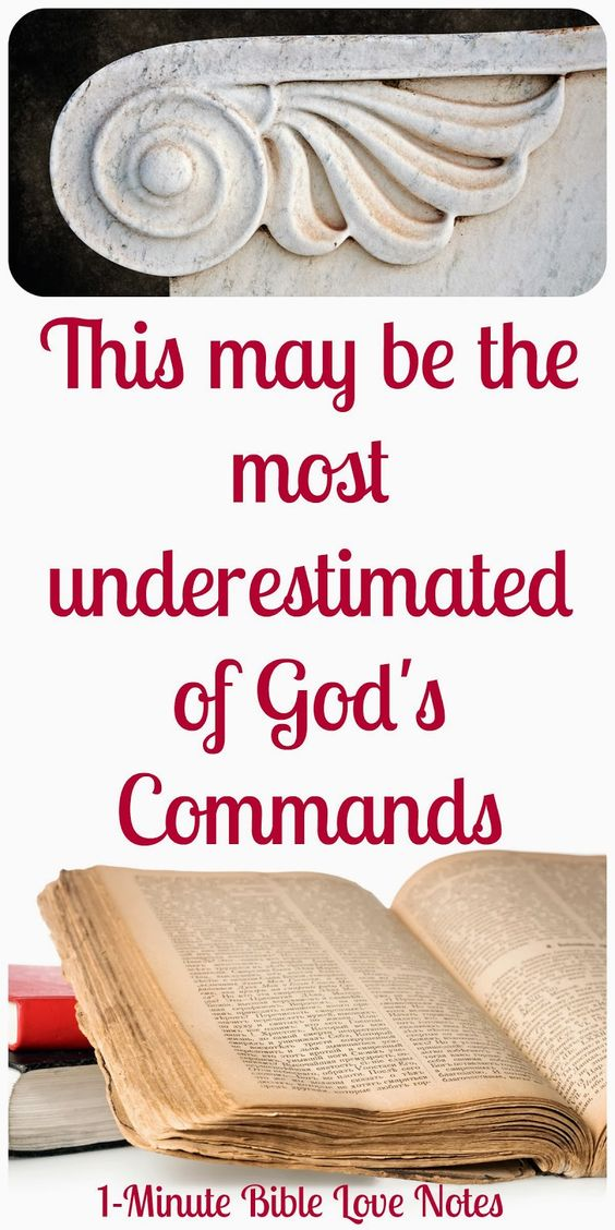 how to read the bible and understand it