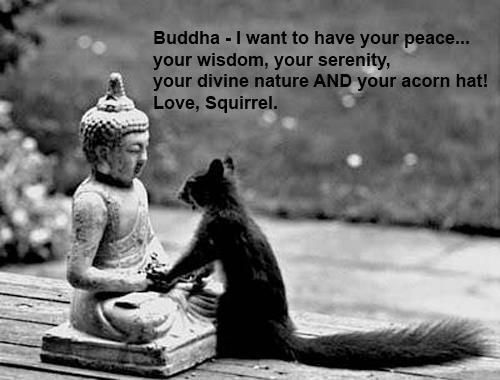 Buddha - I want to have your peace, your wisdom, your serenity, your divine nature AND your acorn hat!   Love, Squirrel #Squirrel #Buddha