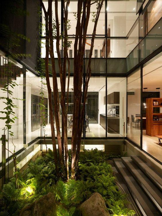 beautiful indoor garden of modern interior Architecture