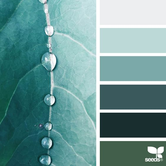 [Trending] Nature-Inspired Color Palettes AKA Design Seeds For Designers Crafters And Home Decorators