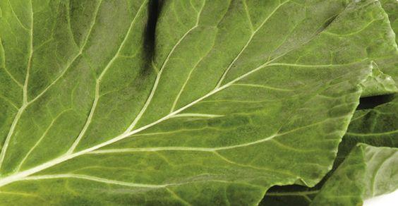 Revista Viva Mais - Veja os benefícios da couve no seu prato