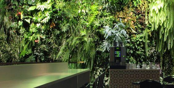 vertical garden - Pesquisa Google