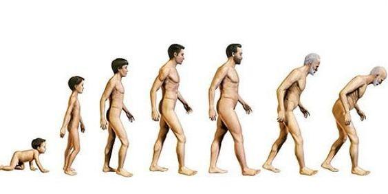 Test: calcula tu edad biológica