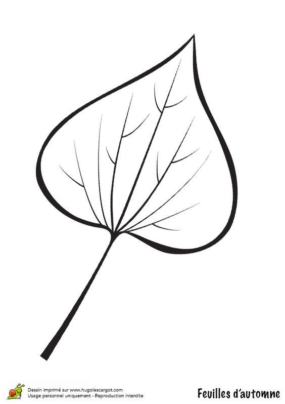 coloriage dessin feuilles automne lierre coloriages dessins d 39 automne pinterest. Black Bedroom Furniture Sets. Home Design Ideas