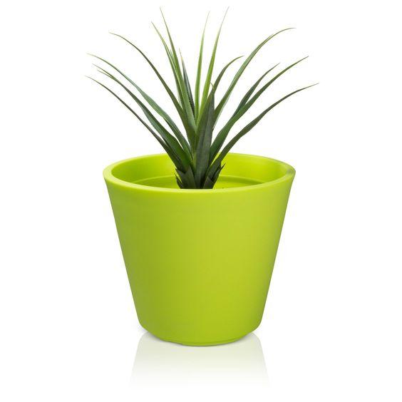 Der güne Kunststoff-Pflanzkübel RIVA 65 wirkt elegant und wird zum absoluten Blickfang in jeder Umgebung. Bei genauem Betrachten fällt sofort seine feinkörnige, makellose Oberfläche auf. Diese verleiht dem Blumenkübel einen sehr hochwertigen Look. Er eignet sich als Dekoelement in allen Bereichen. Flure, Wohnräume, Besprechungsräume oder aber auch Gärten bekommen durch den Pflanzkübel einen besonderen Touch.
