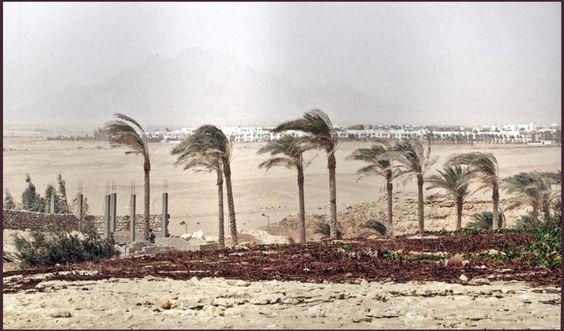 Desert by Edivanich